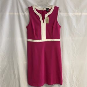 NWT Ann Taylor Knit Dress Size 8